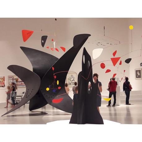 Музей Сулаж (Musée Soulages): Родез, Авейрон