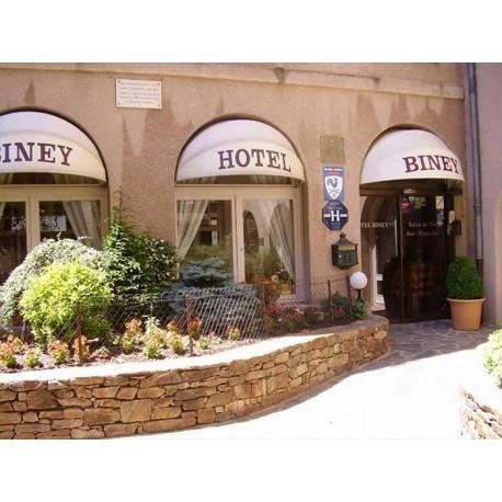 Отель Hotel Biney 3* (Родез, Авейрон)