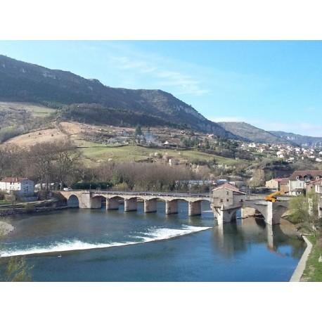 Мост Пон-Вьё Мийо (Pont-Vieux de Millau): Мийо, Авейрон