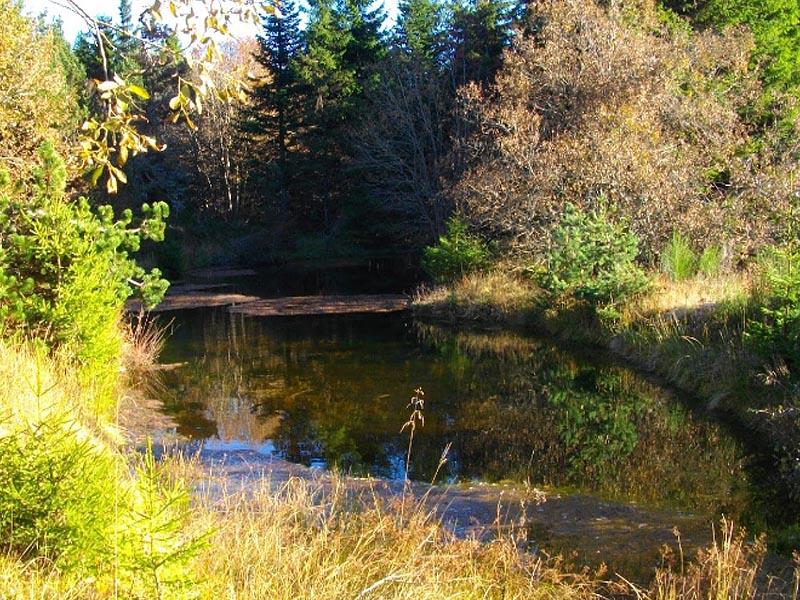Горное озеро - исток реки Ардеш