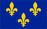 Флаг Франции в XIV веке