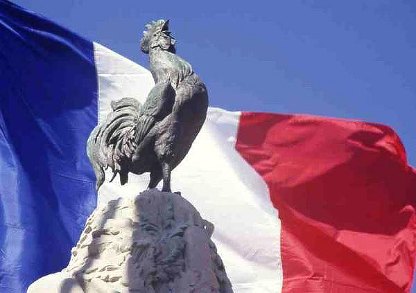 Галльский петух во Франции: описание и значение