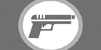 Таможенные правила Франции при ввозе/вывозе оружия и боеприпасов